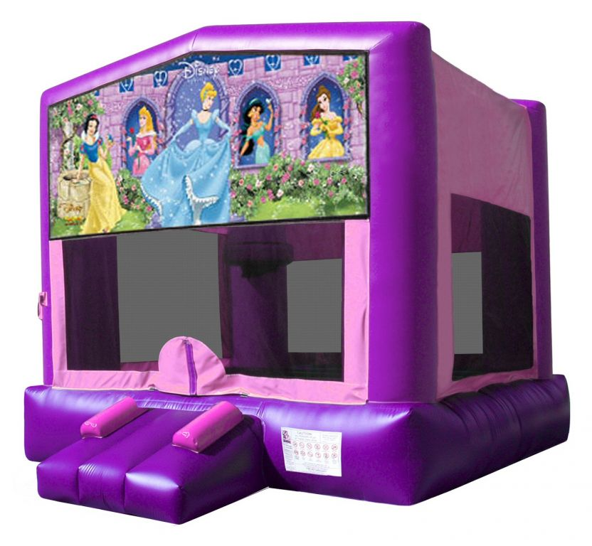 Princess Themed Bouncy Castle Hire Palmerston North